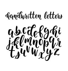 Handwritten latin calligraphy brush script of vector