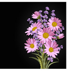 beautiful daisies and lavender flowers vector image