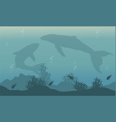 Silhouette of big whale on ocean landscape vector