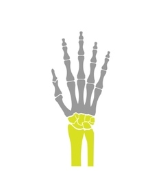 Flat icon of hand bones on white background vector