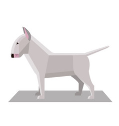 bull terrier in the minimalist style vector image vector image