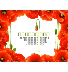 floral poppy frame vector image vector image