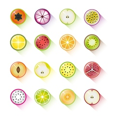 Fruit icon collection vector image