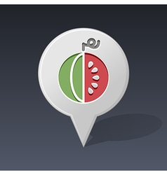 Watermelon pin map icon fruit vector