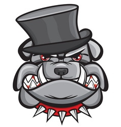 Angry bulldog head with hat vector image