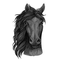 Black raven horse full face artistic portrait vector
