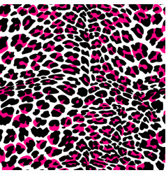 fashion leopard exotic seamless pattern vector image