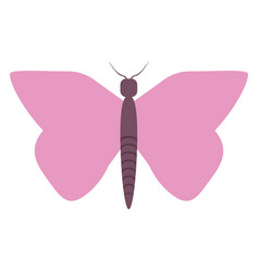 women day pink butterfly icon vector image