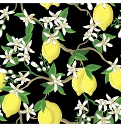 Floral pattern with lemons and white flowers vector