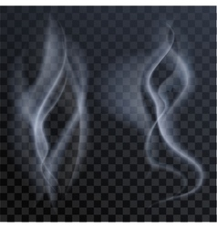 Set of white smoke on dark transparent background vector image