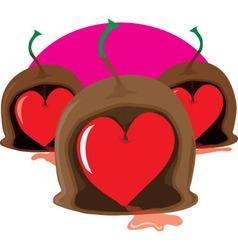 chocolate cherry heart vector image