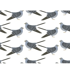 pattern of Cuckoo vector image
