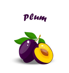realistic plum whole and slice vector image vector image