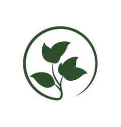 Green leaves icon nature design graphic vector