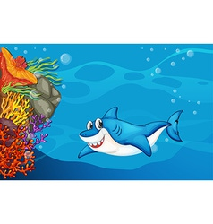 A shark under the sea vector image vector image