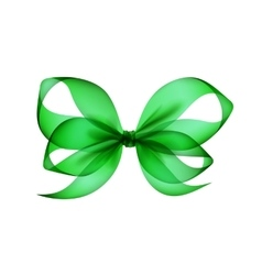 Green transparent bow top view on background vector