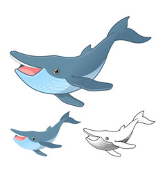 Hump Back Whale vector image