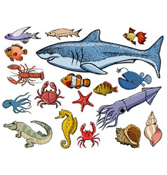 Set of sea animals with shark crab squid vector