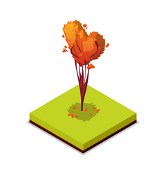 trimmed tree isometric 3d icon vector image vector image
