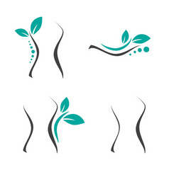 Woman surgery and chiropractic logo set vector
