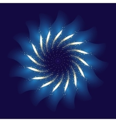 Firework ornament vector