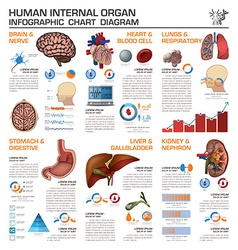 Human internal organ health and medical vector