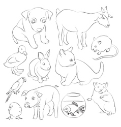Animals pets icons set vector