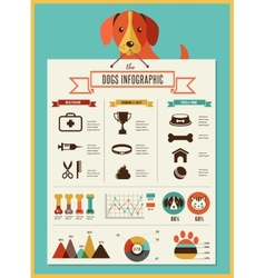 Dogs infographic and icon set vector image