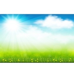 Green field vector image
