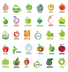 great collection logos apples vector image