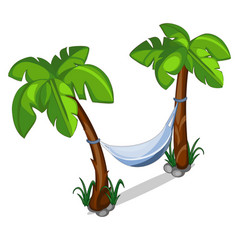 Hammock hanging between two palm trees vector