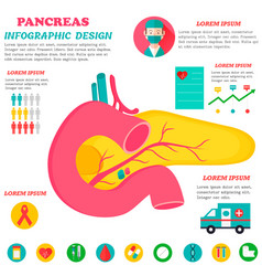 Infographic poster with pancreas vector