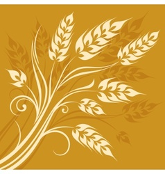 Stylized ears of wheat on vector