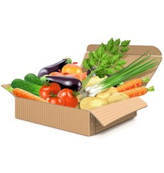 Carton box with vegetables vector