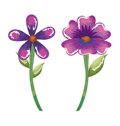 Cute flowers decorative icon vector