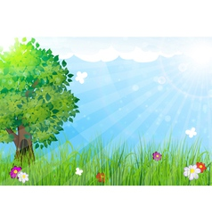 Nature landscape vector image