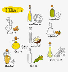 9 isolated doodle cooking oils mixed colored and vector