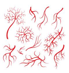 Human eye veins red capillaries blood arteries vector