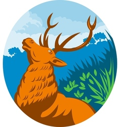 Roaring red stag deer with forest vector