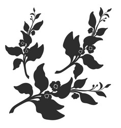 branches silhouette vector image vector image