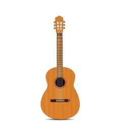guitar isolated vector image vector image