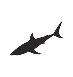 Shark silhouette vector image