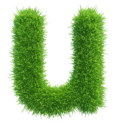 Small grass letter u on white background vector