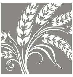Stylized ears of wheat on grey vector