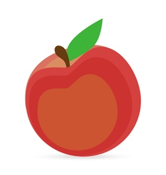 Peach on a white background vector