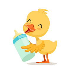 little yellow duck chick holding a bottle of milk vector image