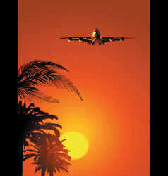 Airliner on sunset sky vector