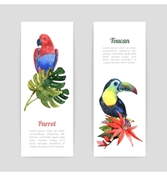 Tropical birds watercolor banners set vector image