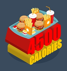 Fast food calorie range Many of junk food vector image