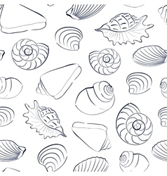 Seashells white seamless background vector
